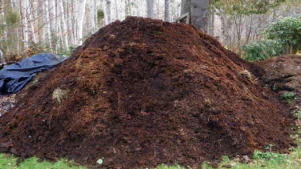Il cumulo di compost è sempre disposto a strati.