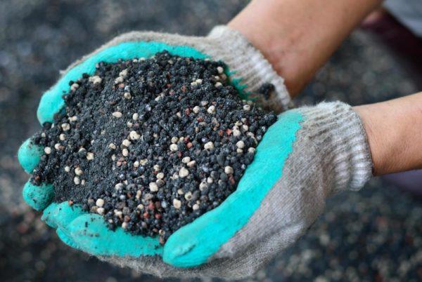 Mescolato con il fertilizzante macinato cosparso di piante