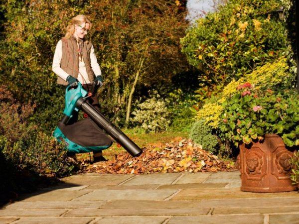 Aspirapolvere da giardino