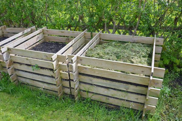 Opzione scatola di compost