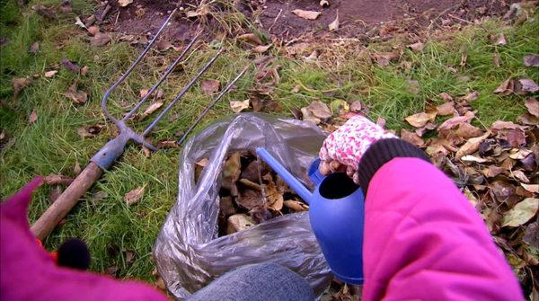Il materiale del compost deve essere ricco di umidità.