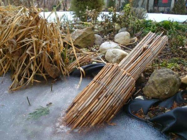 Le ance impediscono al ghiaccio denso di congelarsi e danno ossigeno ai pesci