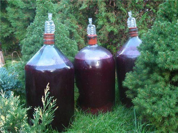 La fermentazione è meglio eseguita in vetro sotto forma di bottiglie o cilindri.