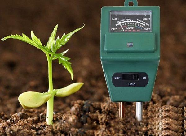 come determinare l'acidità del suolo a casa