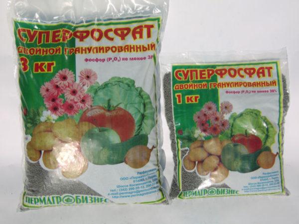 Fertilizzanti fosforici
