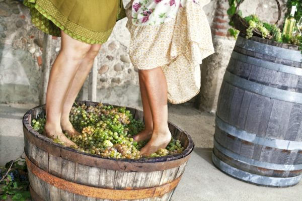 Ottenere il succo dall'uva