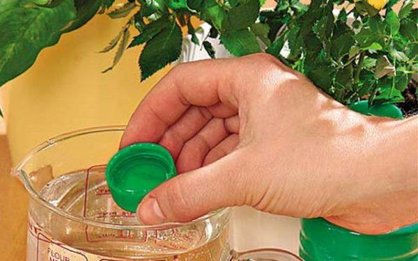 Soluzione di diluizione farmaco nv-101