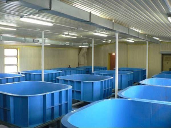 Piscine per l'allevamento di pesci in polipropilene