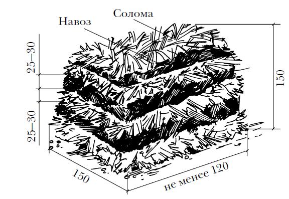 Lo schema dei componenti principali per il compostaggio di funghi