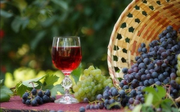 Per la preparazione del vino fermentare uve idonee di qualsiasi varietà.