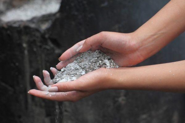 Ash - come un tipo di fertilizzante alla fragola