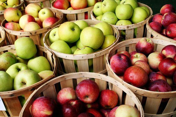 Le migliori varietà di mele
